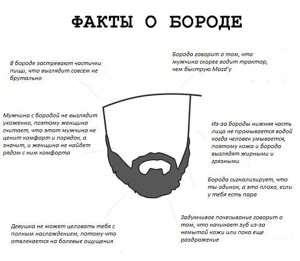 Смешные картинки о бороде, брате картинки светлячок