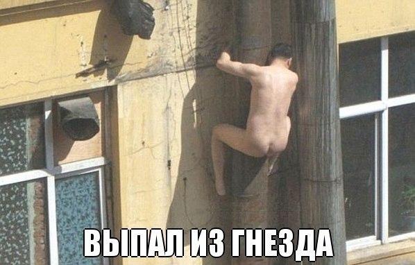 смешные фото голых мужчин