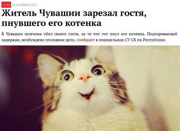 Украинских, чувашские смешные картинки