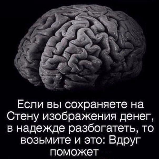Елочкой внутри, смешные картинки с надписями про мозг