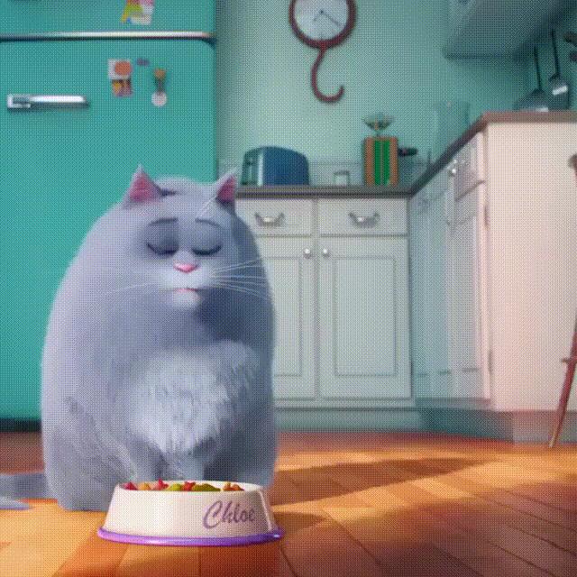 Гифка с котом у холодильника