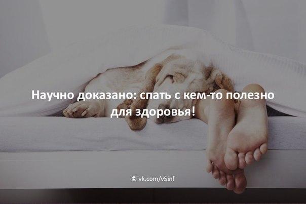 Полезно ли спать днем? - fo