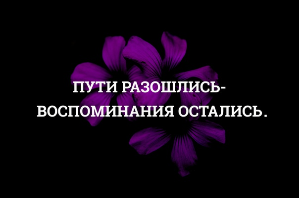 ярослава был картинки разошлись наши пути нужно найти требуемый