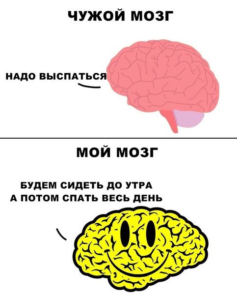 картинка пока мозг нашли, что