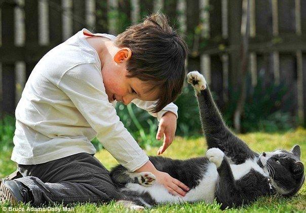 Картинки по запросу Ребенок с остервенением на лице натягивает поводок