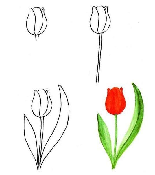 Поэтапное цветов