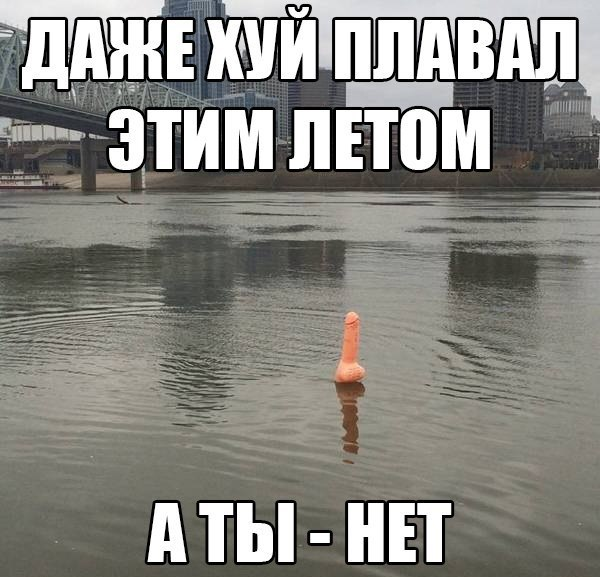 хуй там плавал картинка