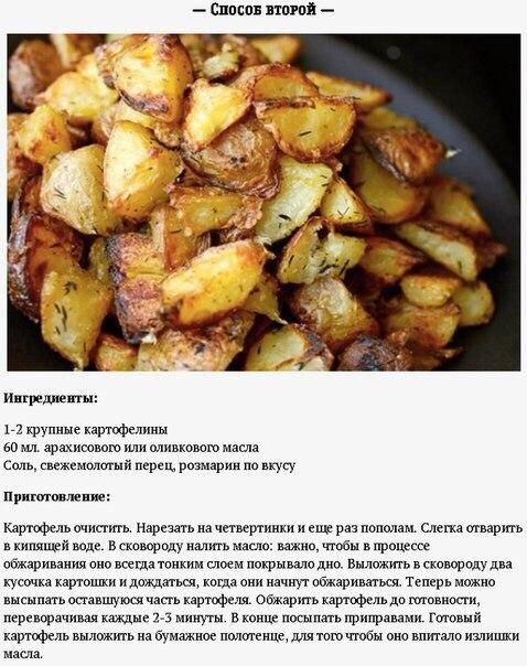 Кулинария рецепты все из картошки