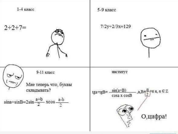 Смешные картинки алгебра, разными животными красивые